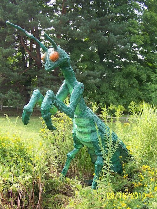 mantis religiosa como adorno en un jardín