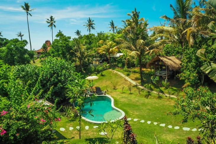 piscina y jardín tropical en la Casa del árbol con piscina en Bali