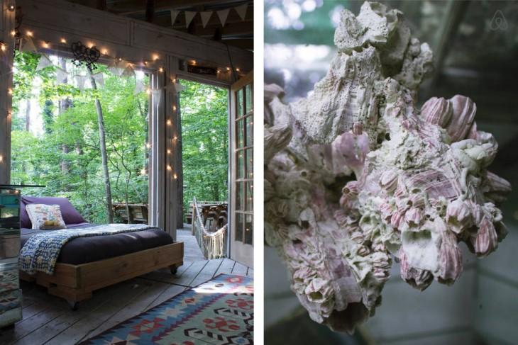 Habitación y decoración de la casa del árbol aislado en Atlanta