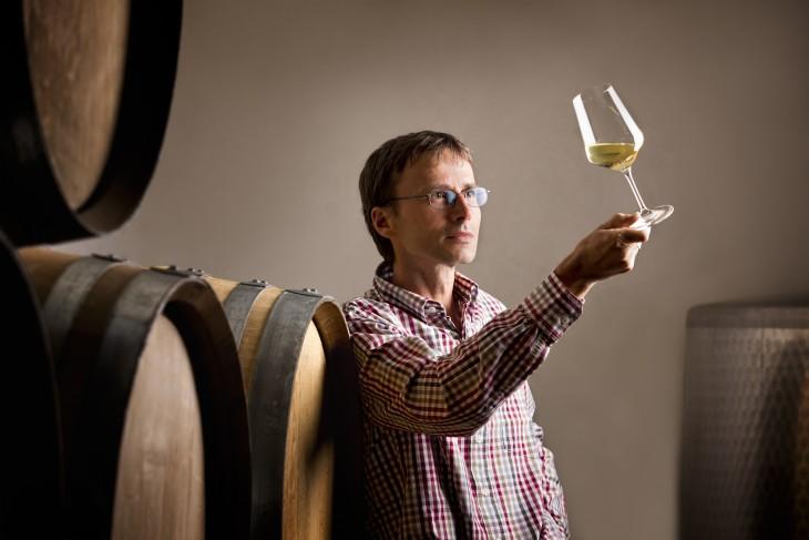 Catador de vino profesional observando un vino en un viñedo