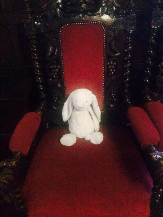 Conejo de felpa sentado en una silla elegante en color rojo