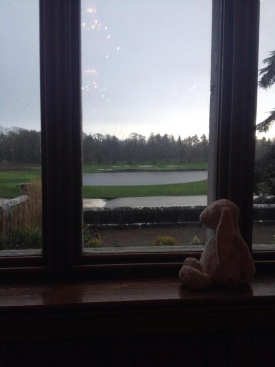 conejo de felpa sentado y asomado a una ventana en un hotel