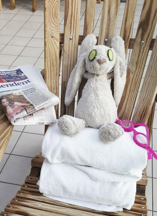 conejo de peluche sentado sobre unas toallas con dos pepinillos sobre los ojos