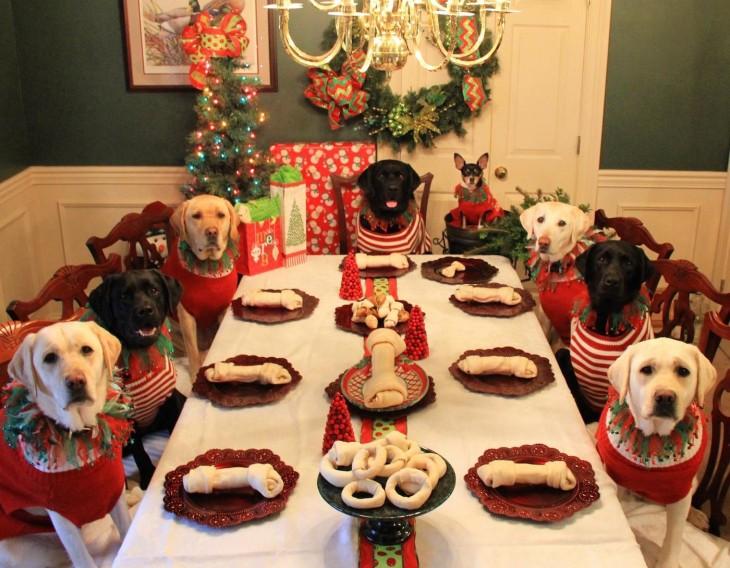 Fotografía de perros a la mesa en navidad con un hueso sobre un plato