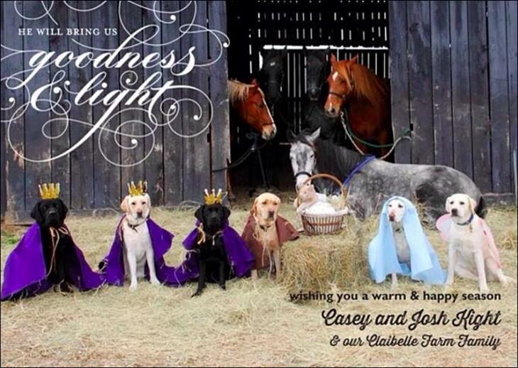 caballos y perros disfrazados representando el nacimiento de Jesús