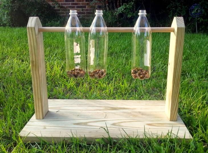 juguete para entrenar la mente de tu perro con madera y 3 botellas de plástico