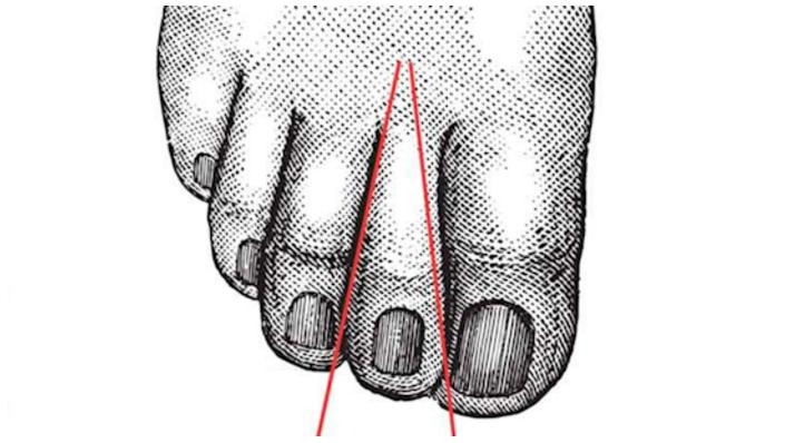 base del segundo dedo del pie