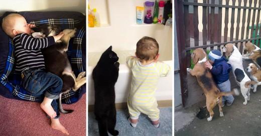 20 adorables fotografías de niños con sus mascotas