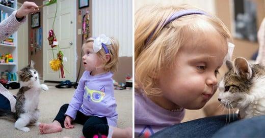 Niña de dos años le amputan un brazo y consigue un pequeño gato igual que ella