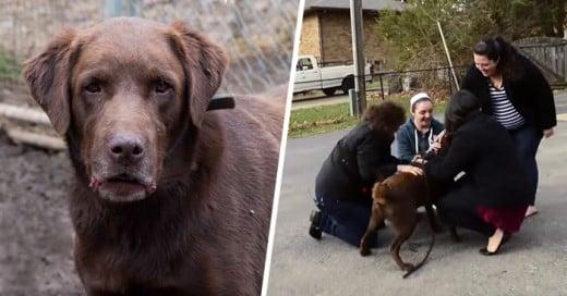 Fue robado y después de 5 años se reencuentra con su familia