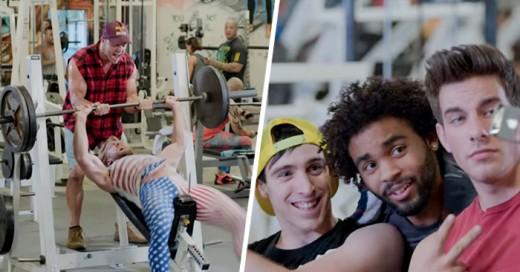 Documental hacerca de la fauna que hay en el gym
