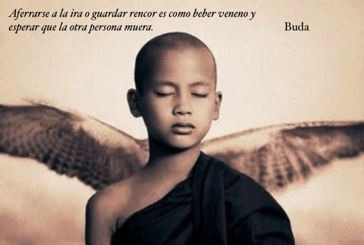la sabiduría del amor según Buda
