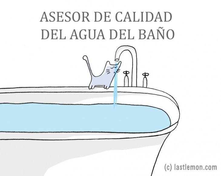 ilustración que muestra a un gato sobre la bañera tomando un poco de agua