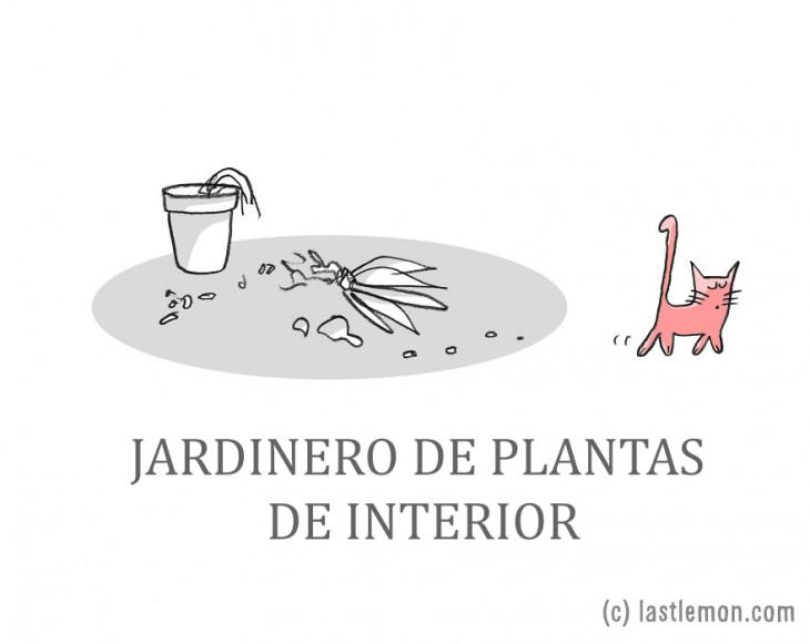 ilustración de un gato que tiro una planta