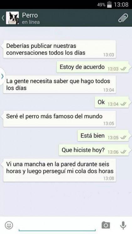 CONVERSACIONES PERRO FINAL