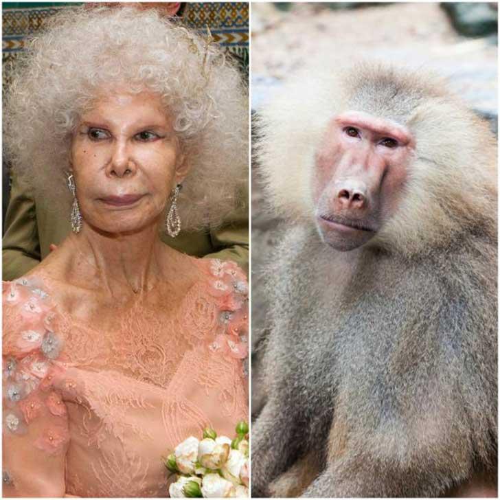 Duquesa de Alba y un mono babuino
