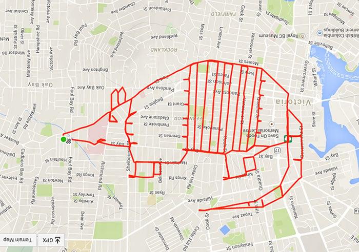 Dibujo de un armadillo hecho en un recorrido gps en bicicleta