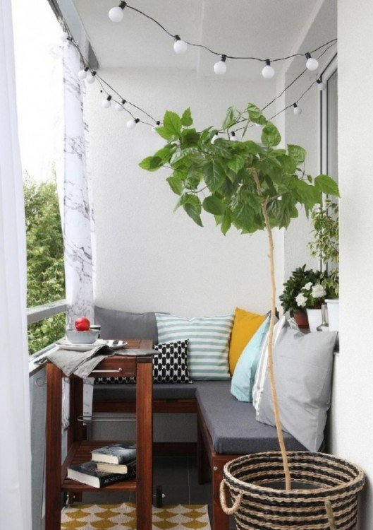 En un balcón siempre es indispensable tener una planta, esta le dará vida y realzará cualquier detalle de la decoración