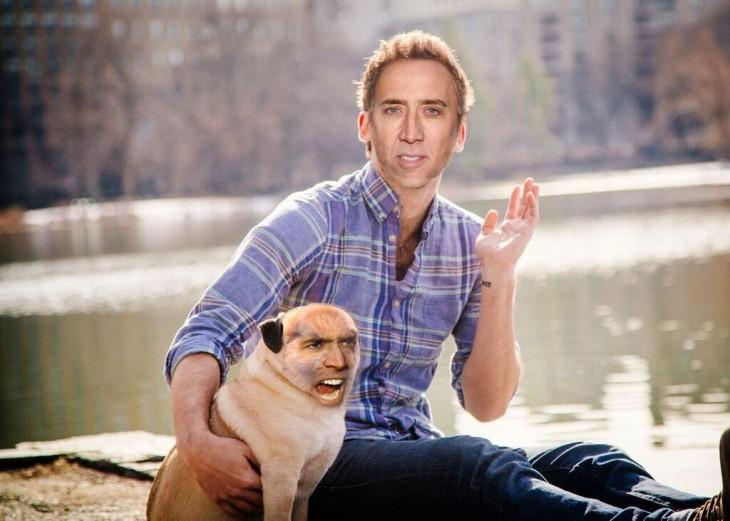 Batalla de photoshop a este hombre y su perro pug con cara de Nicolas Cage