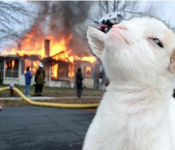 cara de la cabra presumida sobre la imagen de la niña incendio