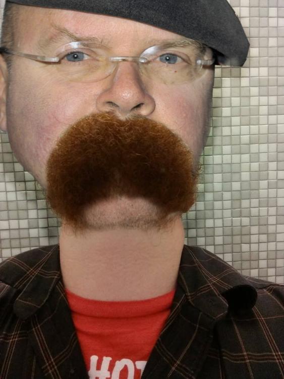 Cara de un hombre con una barba sobre su boca