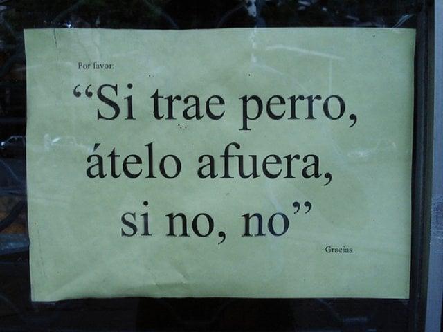 SI TRAE PERRO ÁTELO AFUERA, SI NO, NO. GRACIAS