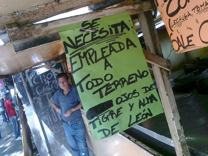 SE NECESITA EMPLEADA A TODO TERRENO, OJOS DE TIGRE Y ALMA DE LEÓN