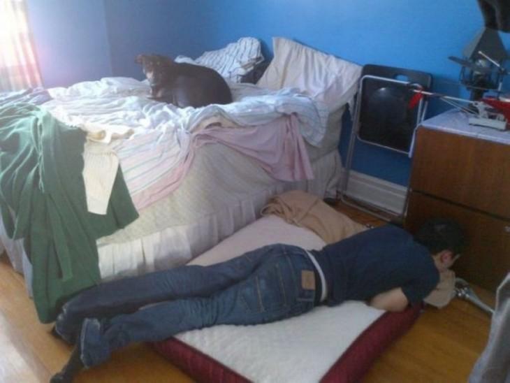 imagen de un perro acostado en la cama mientras un chico está acostado en el suelo
