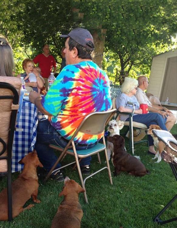 Personas comiendo al aire libre y un grupo de perros mirando la comida
