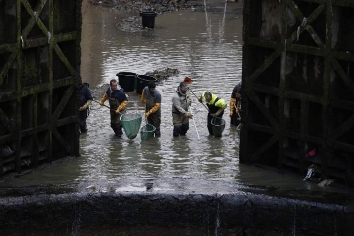 autoridades de París limpian el canal Saint-Martin