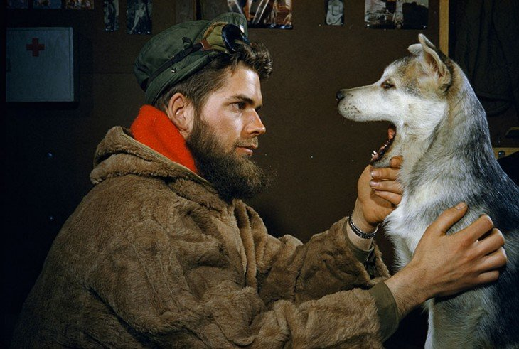 A man examines the teeth of a 10-month-old Alaskan Malamute puppy near the South Pole, 1957.