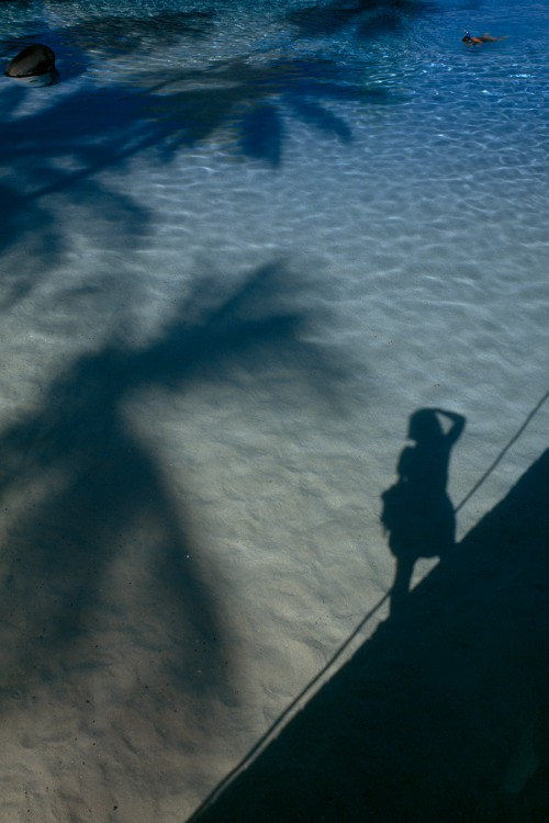 Palm trees and a photographer cast shadows on the ocean's surface near Tahiti Island