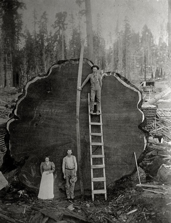 Leñadores del los años treinta