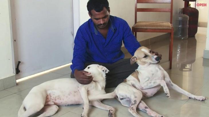 Balu hombre en India que ayuda a los perros callejeros