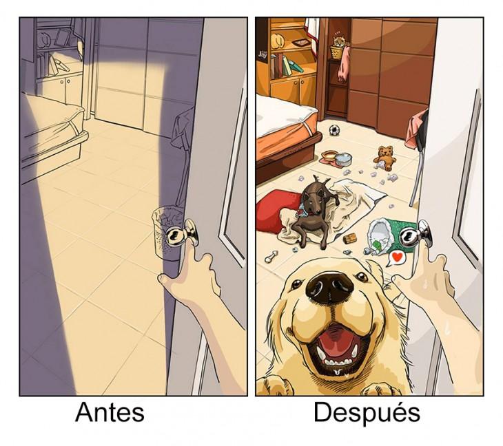 ilustración de como luce tu cuarto antes y después de tener mascotas