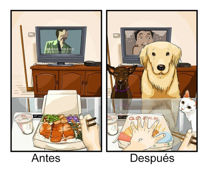 ilustración de como es comer antes y después de tener mascotas en casa