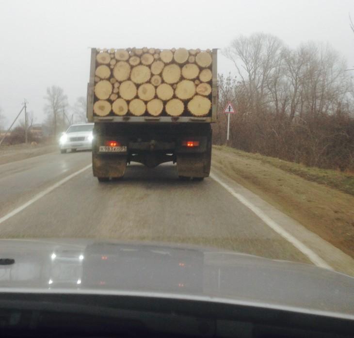 camión con pedazos de tronco acomodados