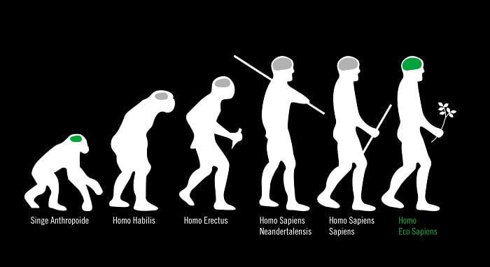 ilustración que muestra la evolución del ser humano dejando al final al homo eco sapiens