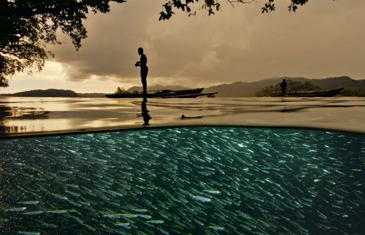 Fotografía de un pescador sobre una lancha donde se pueden ver muchos peces en la superficie