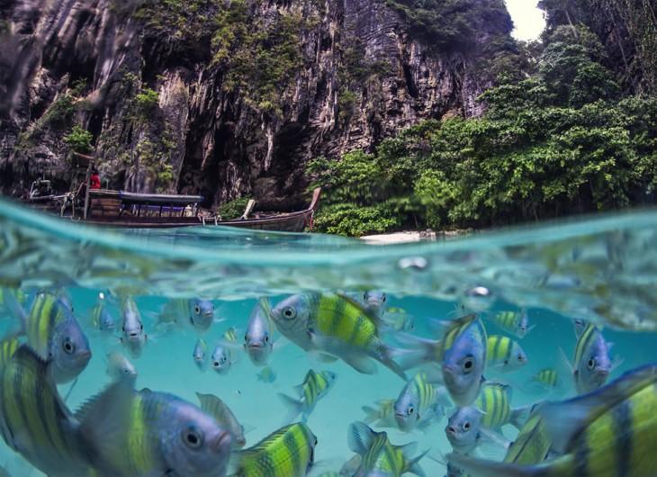 Fotografía de peces bajo el mar en la Isla de Poda, Tailandia