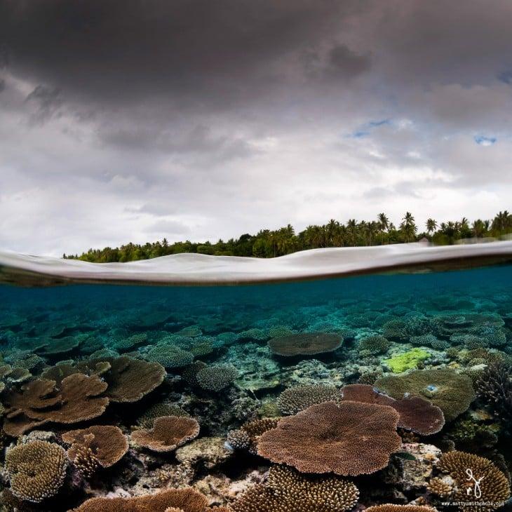 Fotografía debajo del mar