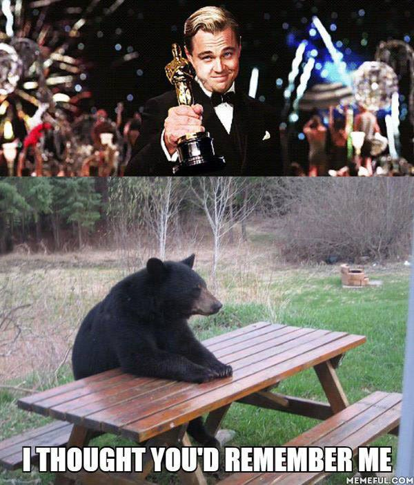 meme de Leonardo DiCaprio agradeciendo al oso por su oscar