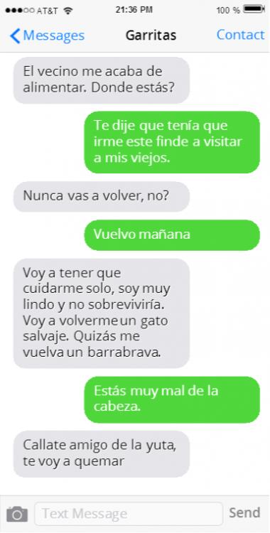 EL DUEÑO SE VA DE VIAJE