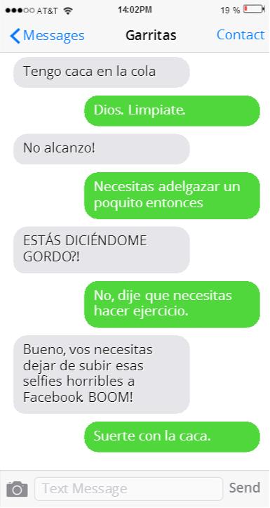 GATO OFENDIDO PORQUE LE DICEN GORDO