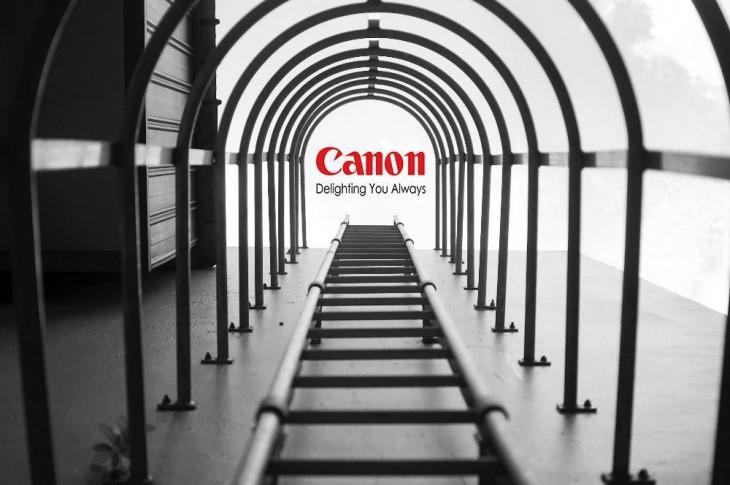 photoshop de la imagen ganadora del concurso nikon con el logotipo canon