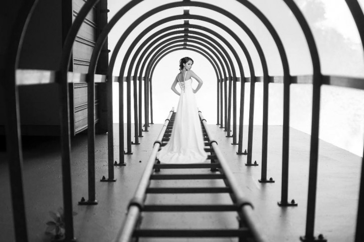 fotografía ganadora del concurso anual de nikon photoshopeada con una novia en el centro de la foto