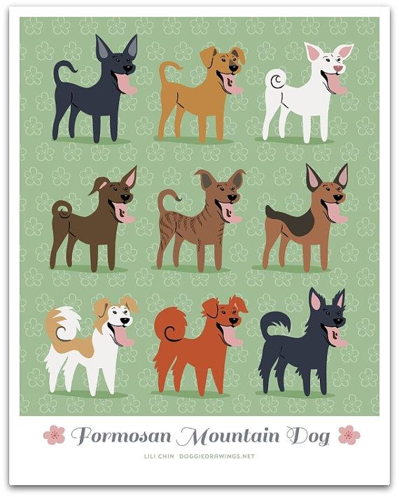 diversidad de razas de la montaña
