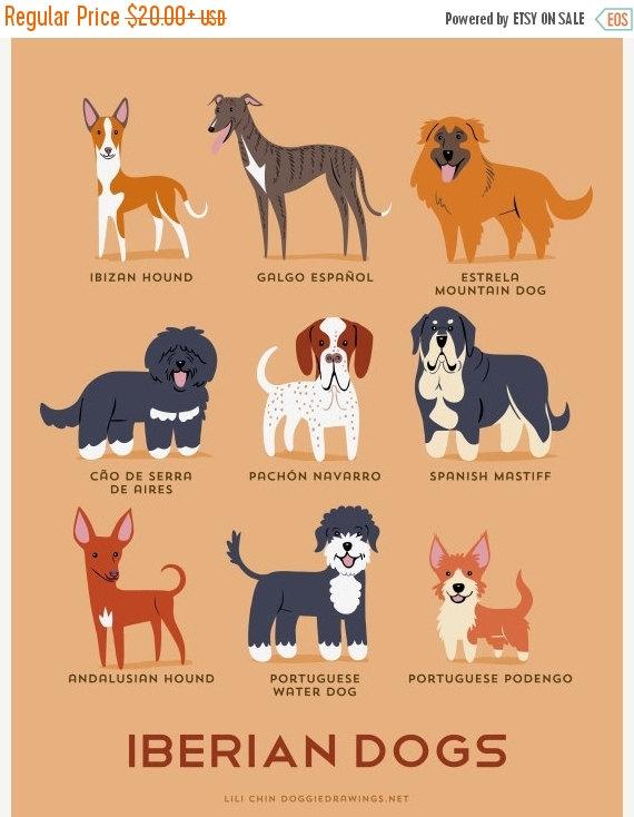 perros ibericos