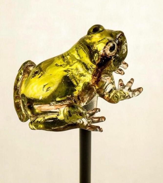 paleta en forma de rana