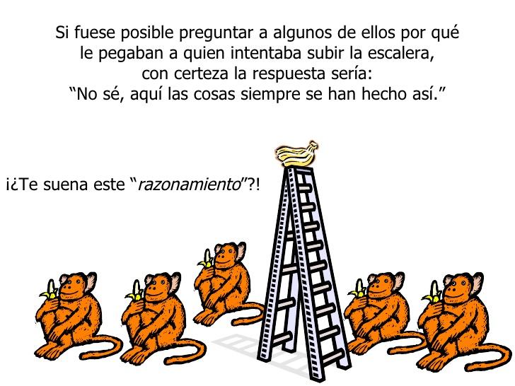 """""""Resistencia al cambio"""", paradigma ilustrado con 5 monos"""
